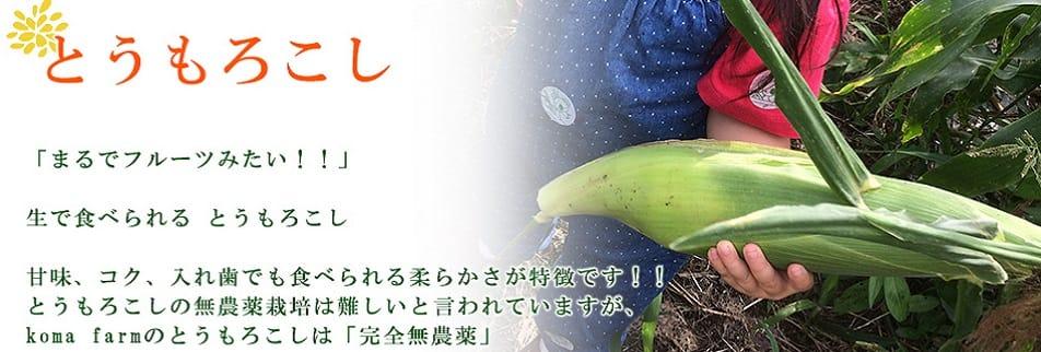 完全無農薬野菜の通販〜森の野菜こまふぁーむ〜